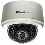 Everfocus - ED335MV2